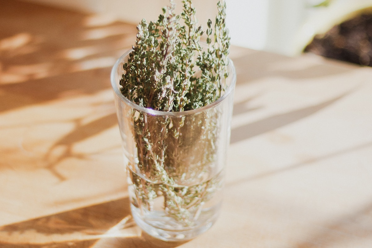 Thyme for Skin, the Natural Solution for Oily and Sensitive Skin 1
