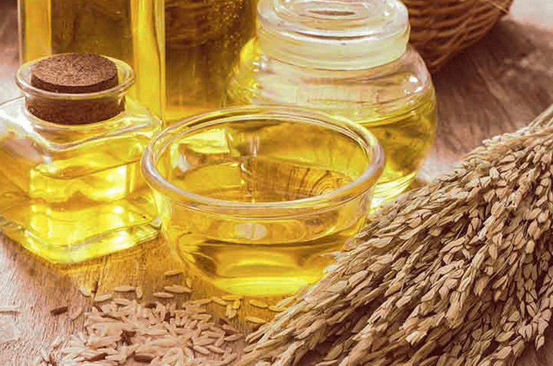 Rice Bran Oil for Skin, the Deeply Hydrating, Anti-Aging Ingredient 1