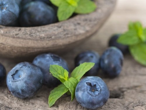 Blueberry Seed Oil for Skin, the Anti-Aging Powerhouse