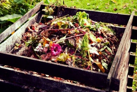 Learn all about composting!