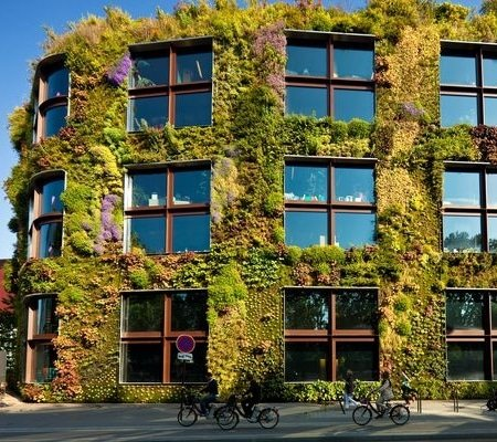 Vertical Gardening - Paris