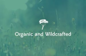 Our Promise to You: Organic and Wildcrafted