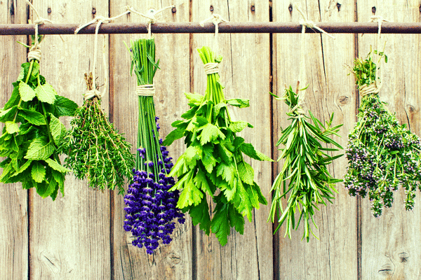 Herbs for PMS