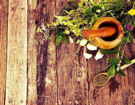 bitter herbs for gut health