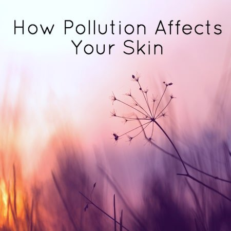 Pollution and Skin Aging