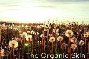 The Organic Skin Care Story and the Rebels Who Championed It