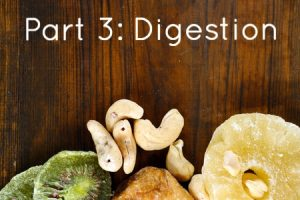 Understanding the Causes of Acne Part 3: Digestion