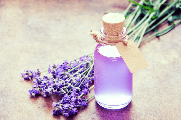 essential oils that calm