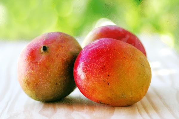 Mango Seed Butter Skin Benefits