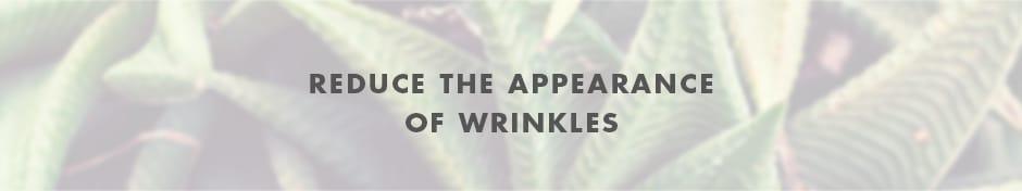 bestof_wrinkles_header
