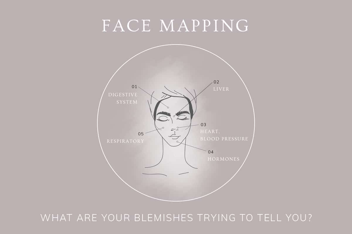 Face Mapping: An Introduction