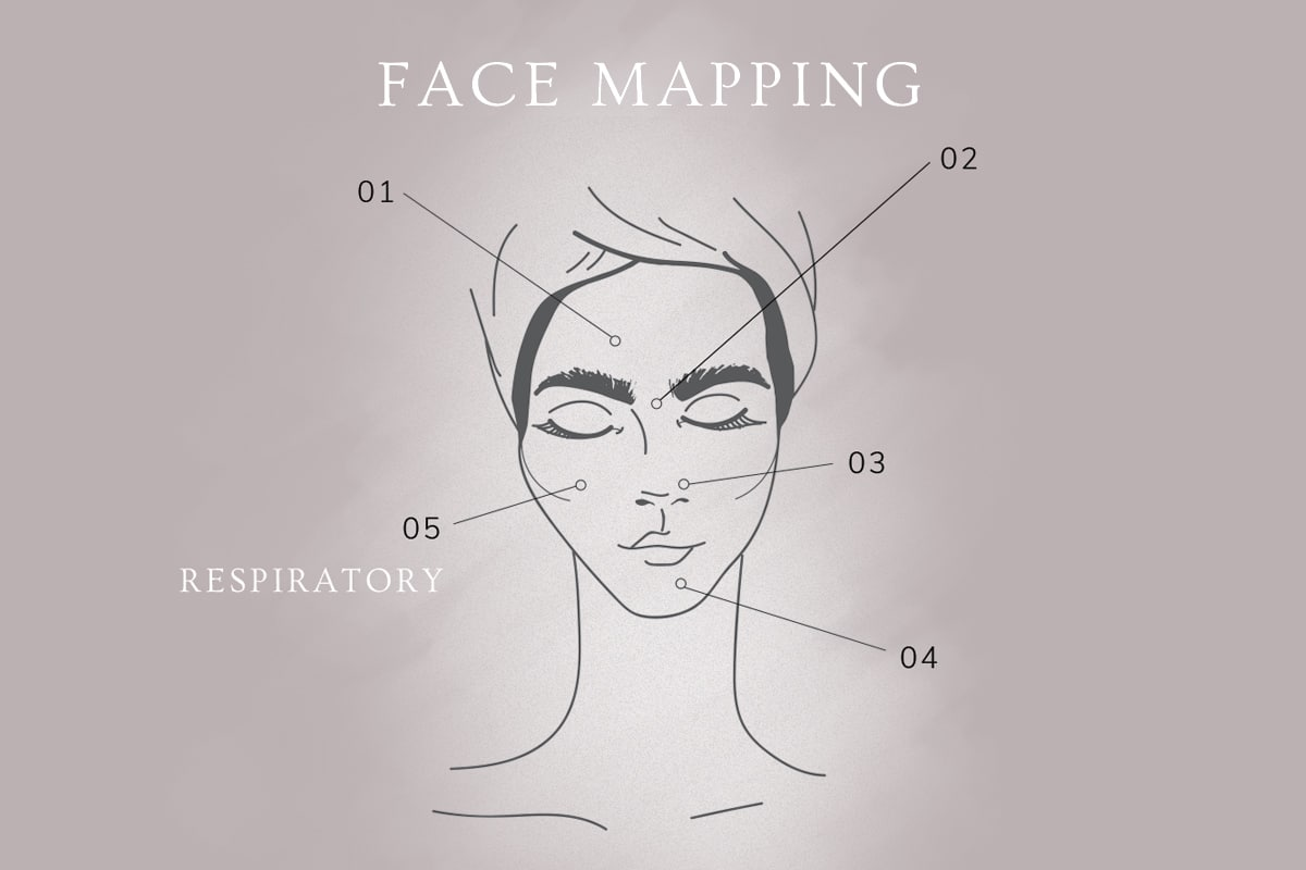 Face Mapping: the Respiratory System and Your Cheeks 1