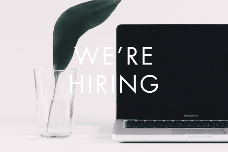 The Annmarie Skin Care Team is Hiring a Part-Time Writer!