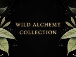 The Annmarie Skin Care Wild Alchemy Collection