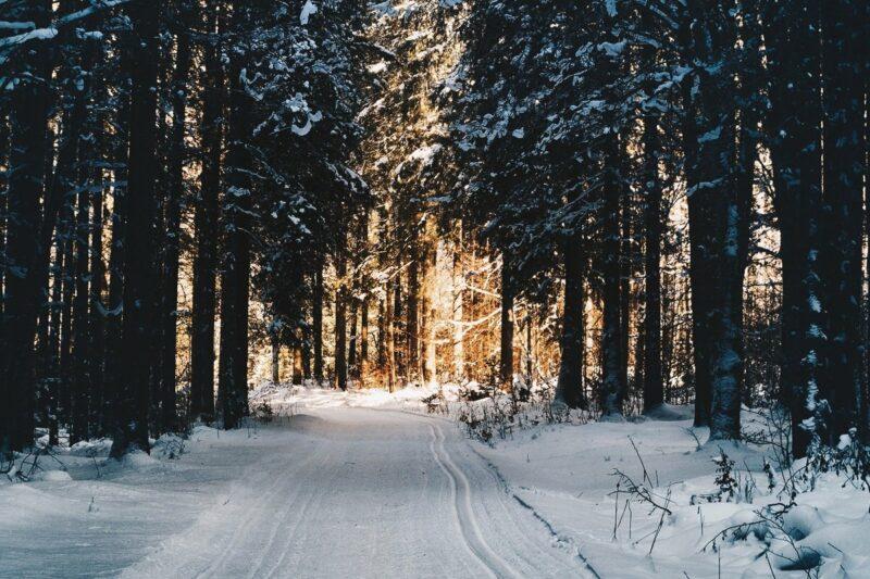 Your Top 6 Winter Travel Adventures