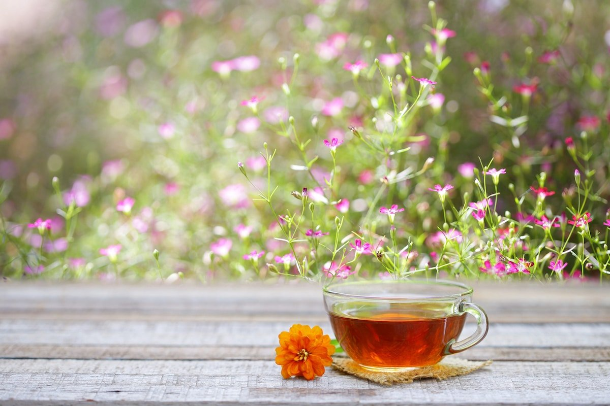 Our Cup of Tea: Springtime Edition