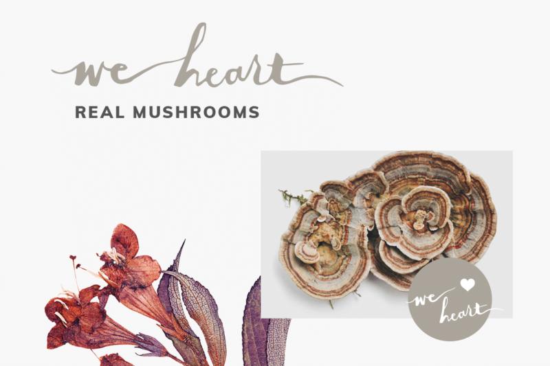 We Heart: Real Mushrooms