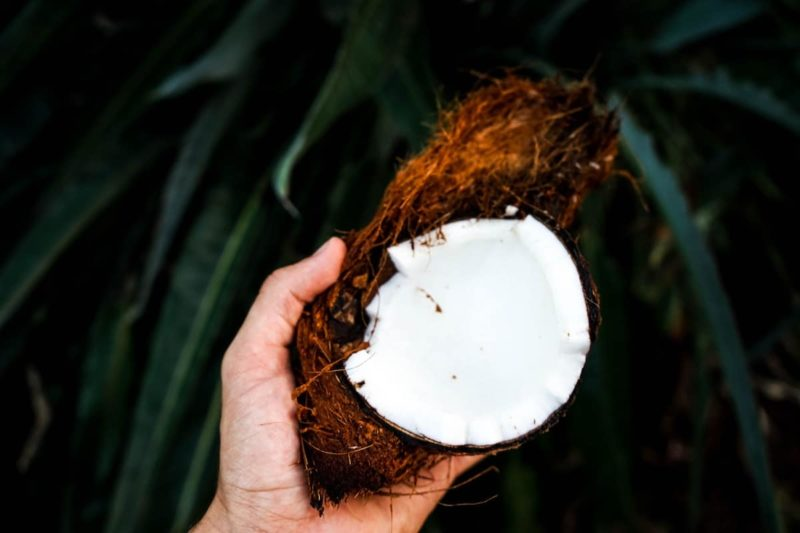 Coconut Oil, the Deeply Hydrating, Super Skin Moisturizer