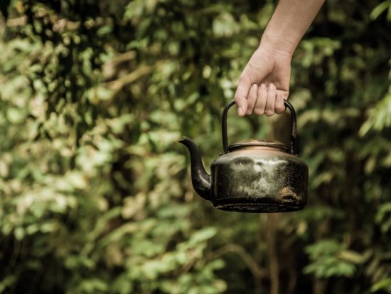 Cup of Tea: Our Favorite Green Products