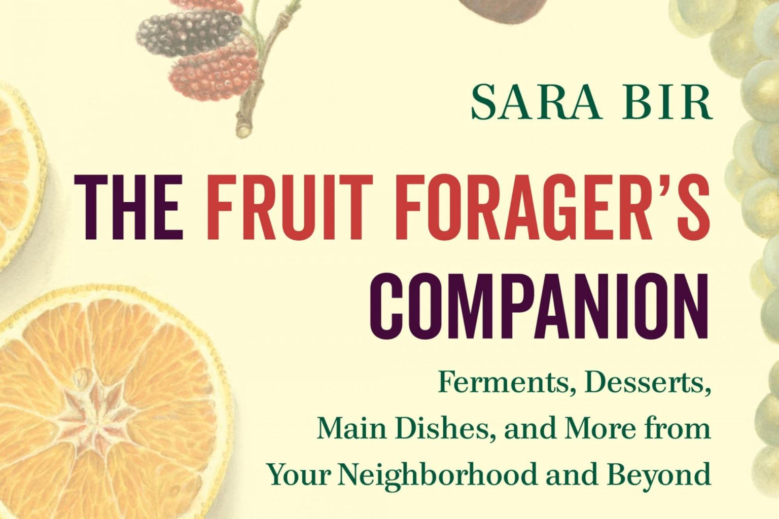FruitForagers_rose hips