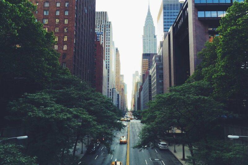 organic new york