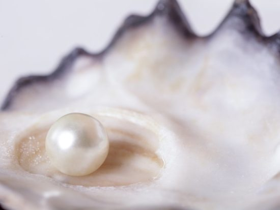 Pearl Powder: The Brightening Elixir You Need in Your Skin Routine