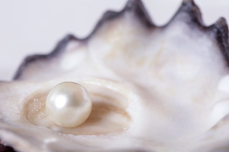 Ingredient Spotlight: Benefits of Pearl Powder for Skin Care Routine -  Annmarie Gianni