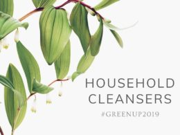 #GreenUp2019: Household Cleaners