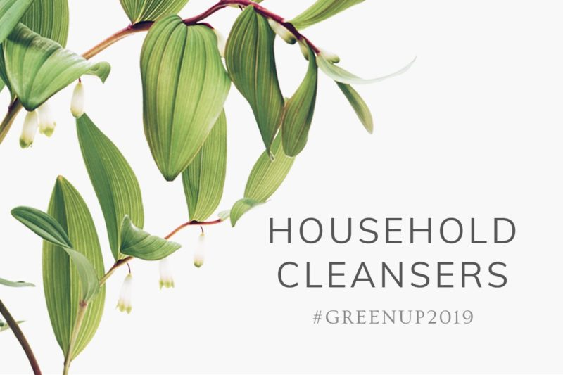 #GreenUp2019: Household Cleaners 1