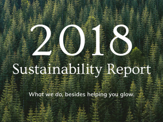 Annmarie Skin Care Sustainability Report: 2018