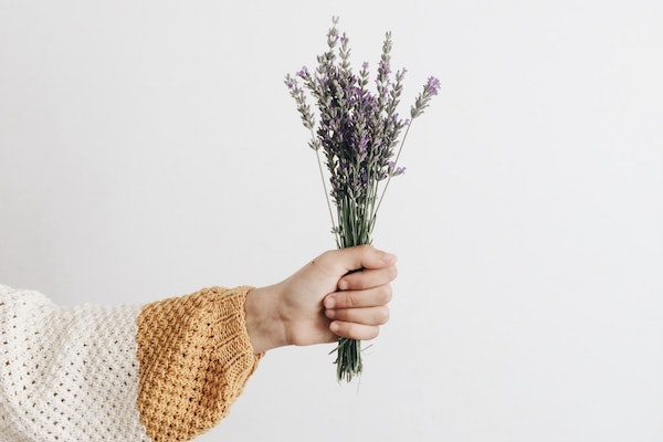 Essential Oils for Combination Skin