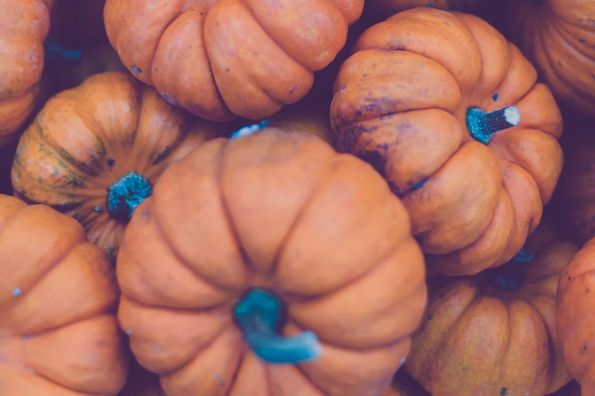 Fall is Here! 5 Home Beauty Uses for Pumpkin 4