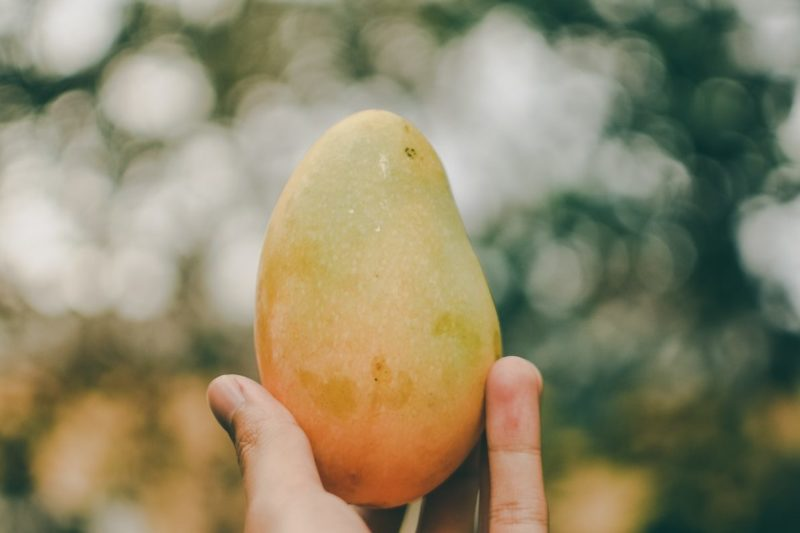 How to Rejuvenate Your Skin With the Benefits of Mango Butter 1