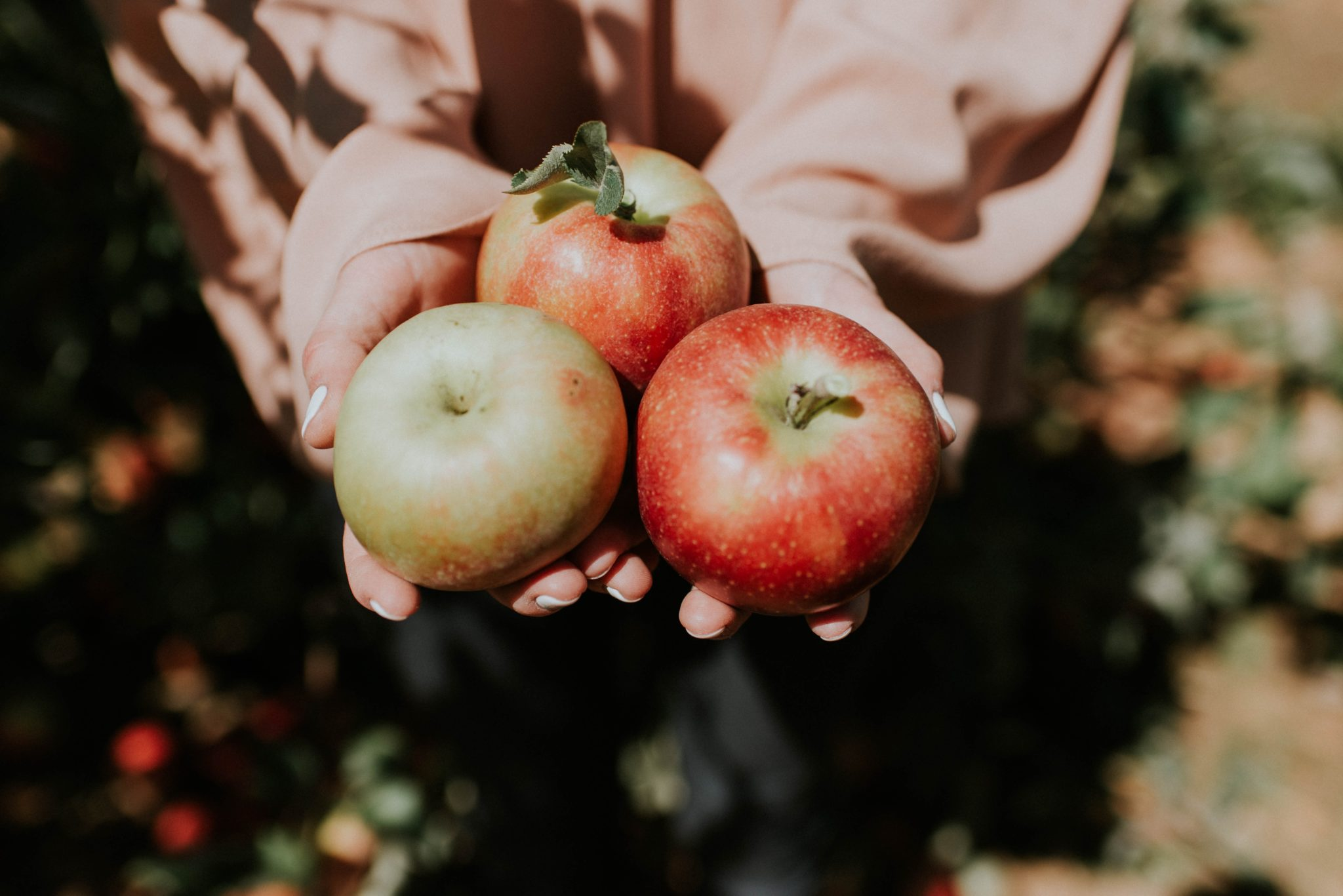 Apples can be internally beneficial as well as good for your skin.