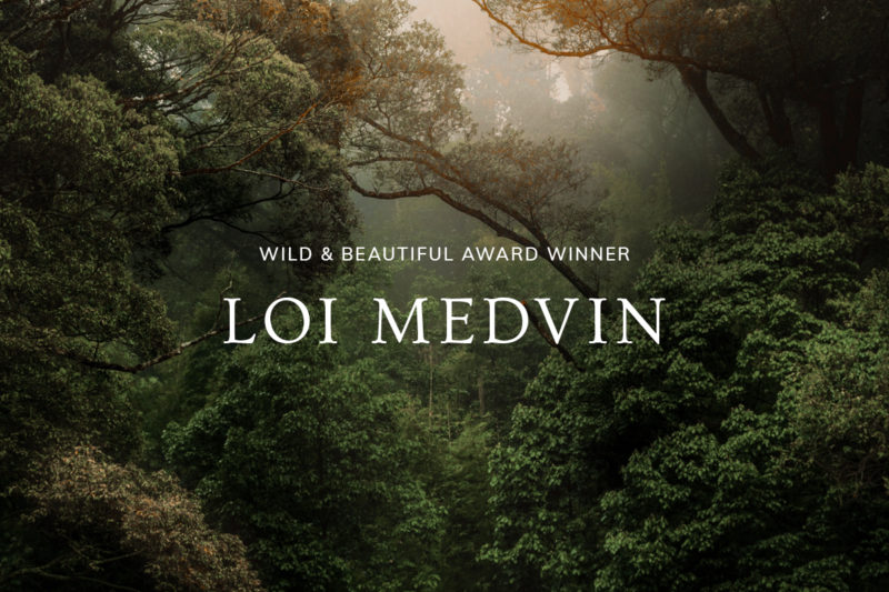 Announcing our 2020 Wild & Beautiful Award Winner: Loi Medvin