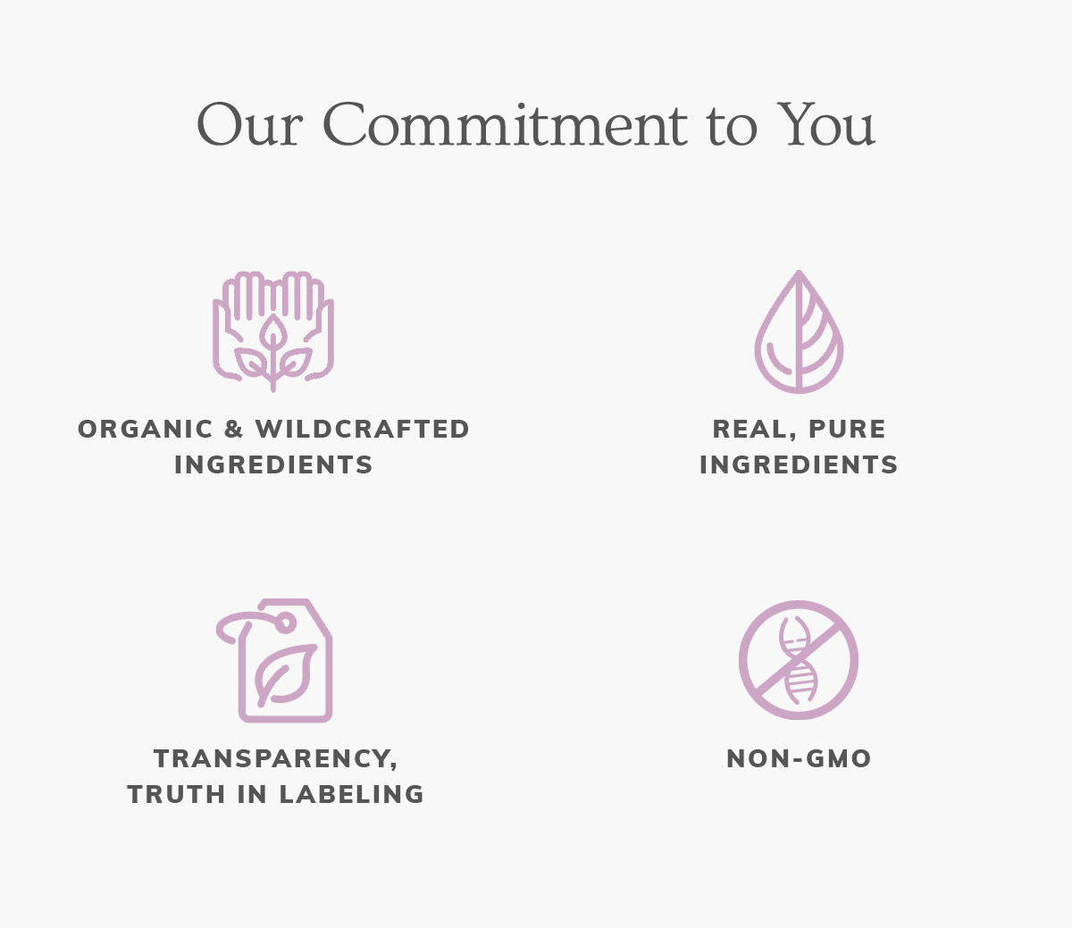 Annmarie Skin Care Sustainability Report: 2020 7